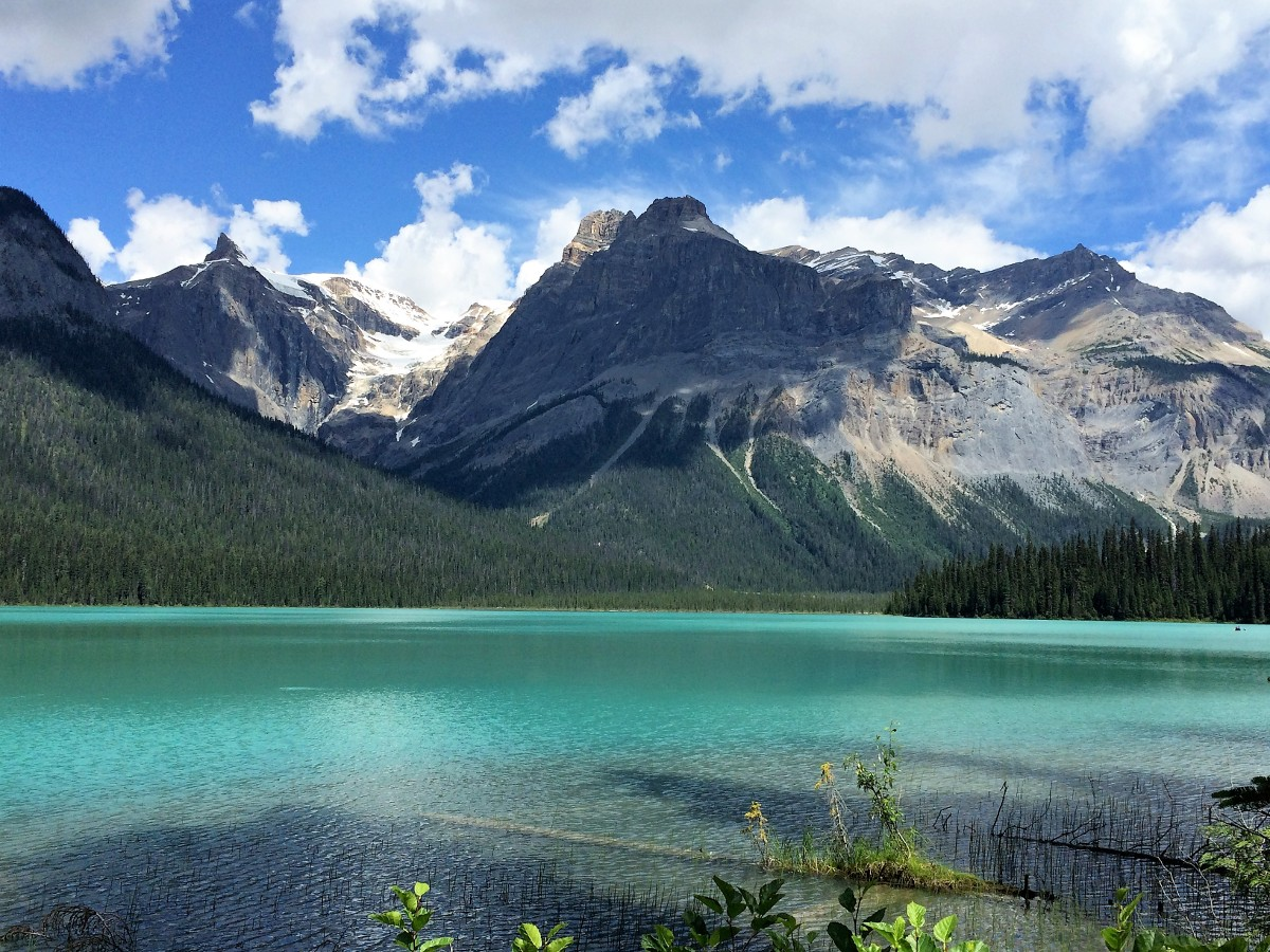 Views of the Emerald Lake Circuit Hike in Yoho National Park