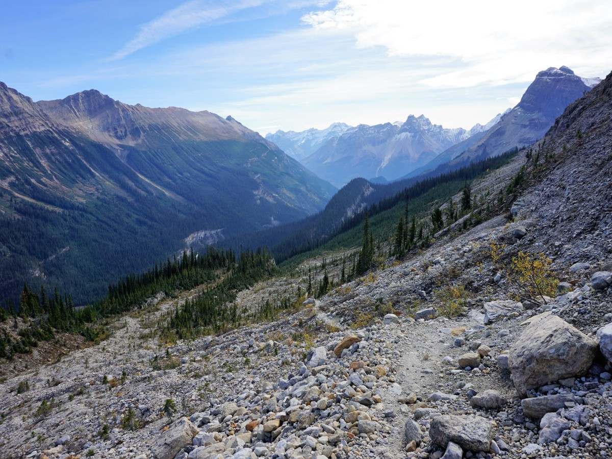Views of the valley on the Iceline Hike in Yoho National Park, Canada