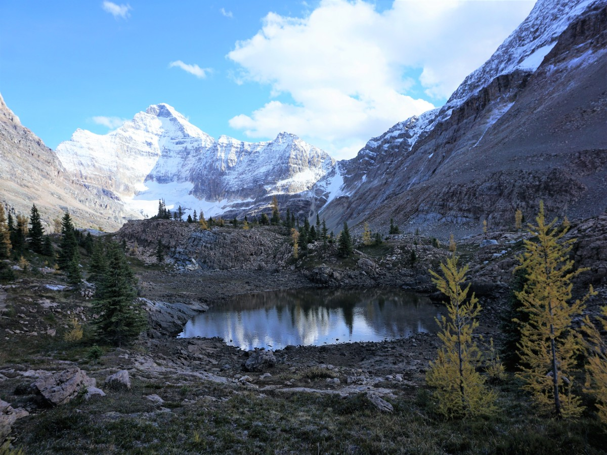 Trail of the Lake McArthur Hike in Yoho National Park, Canada