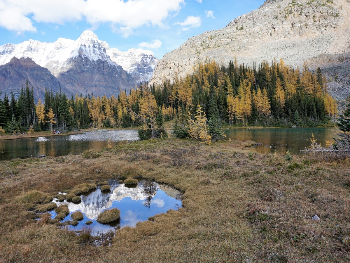 View of the Lake McArthur Hike in Yoho National Park, Canada