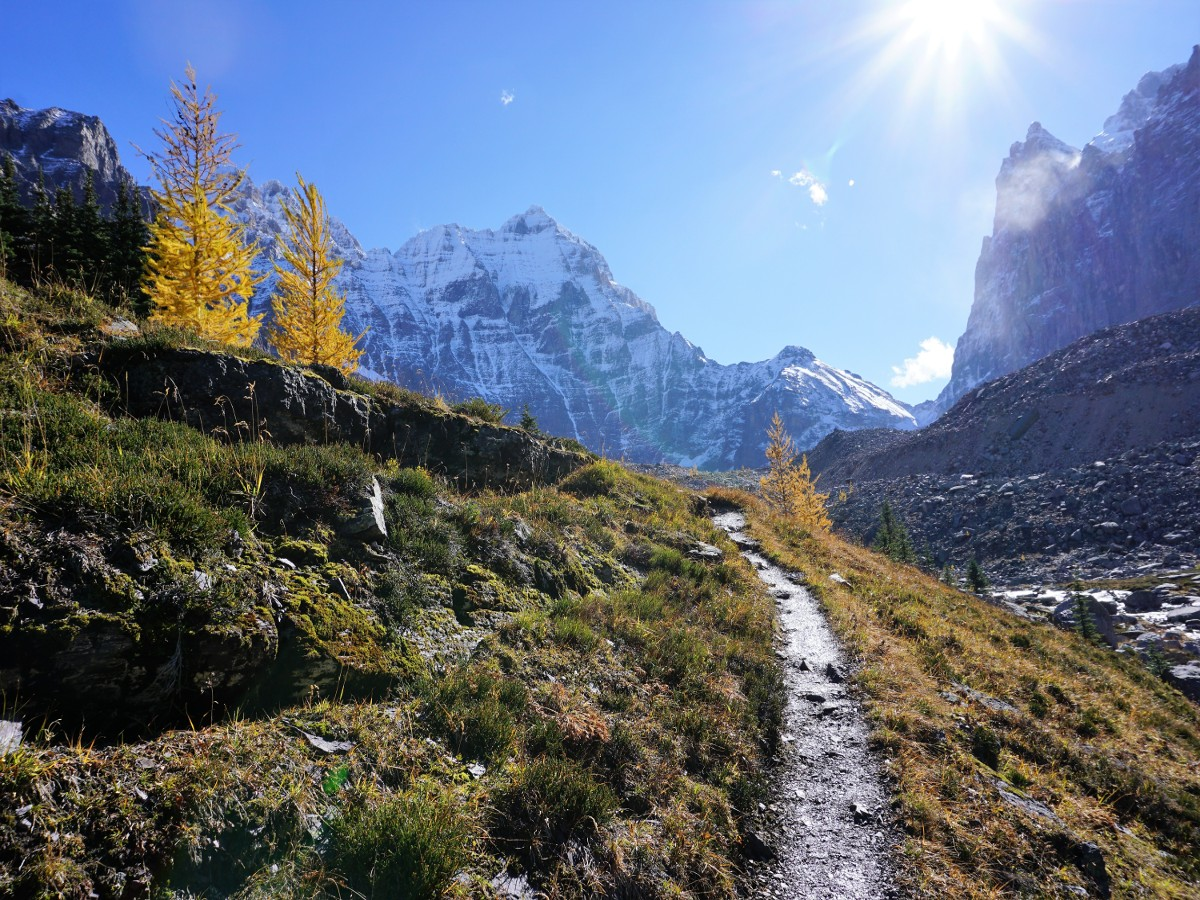 Trail to the lake on the Lake O'Hara All Souls Route Hike in Yoho National Park, Canada