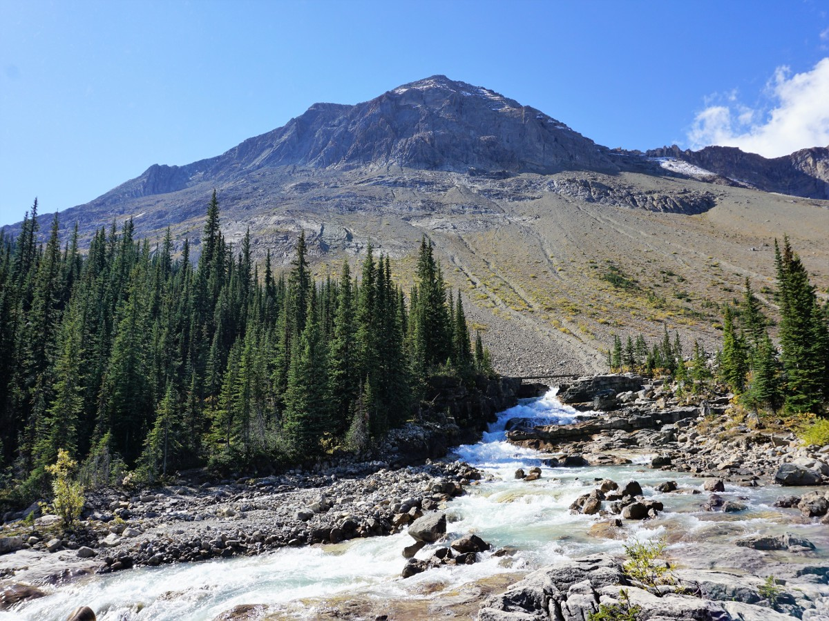 Creek heading up over Whaleback on the Yoho Valley Circuit Hike in Yoho National Park, Canada