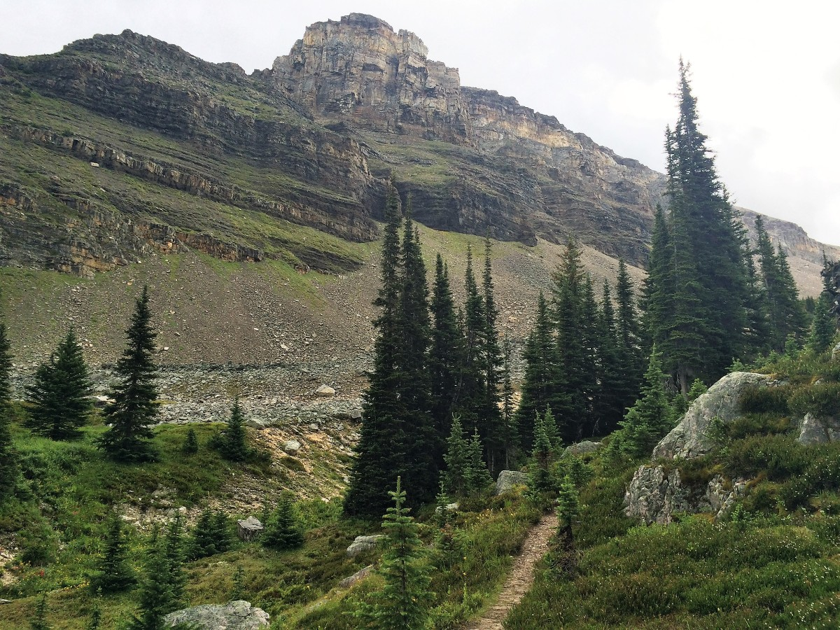 Climbing upon the Crowfoot Pass and Balfour Viewpoint Hike from the Icefields Parkway near Banff National Park