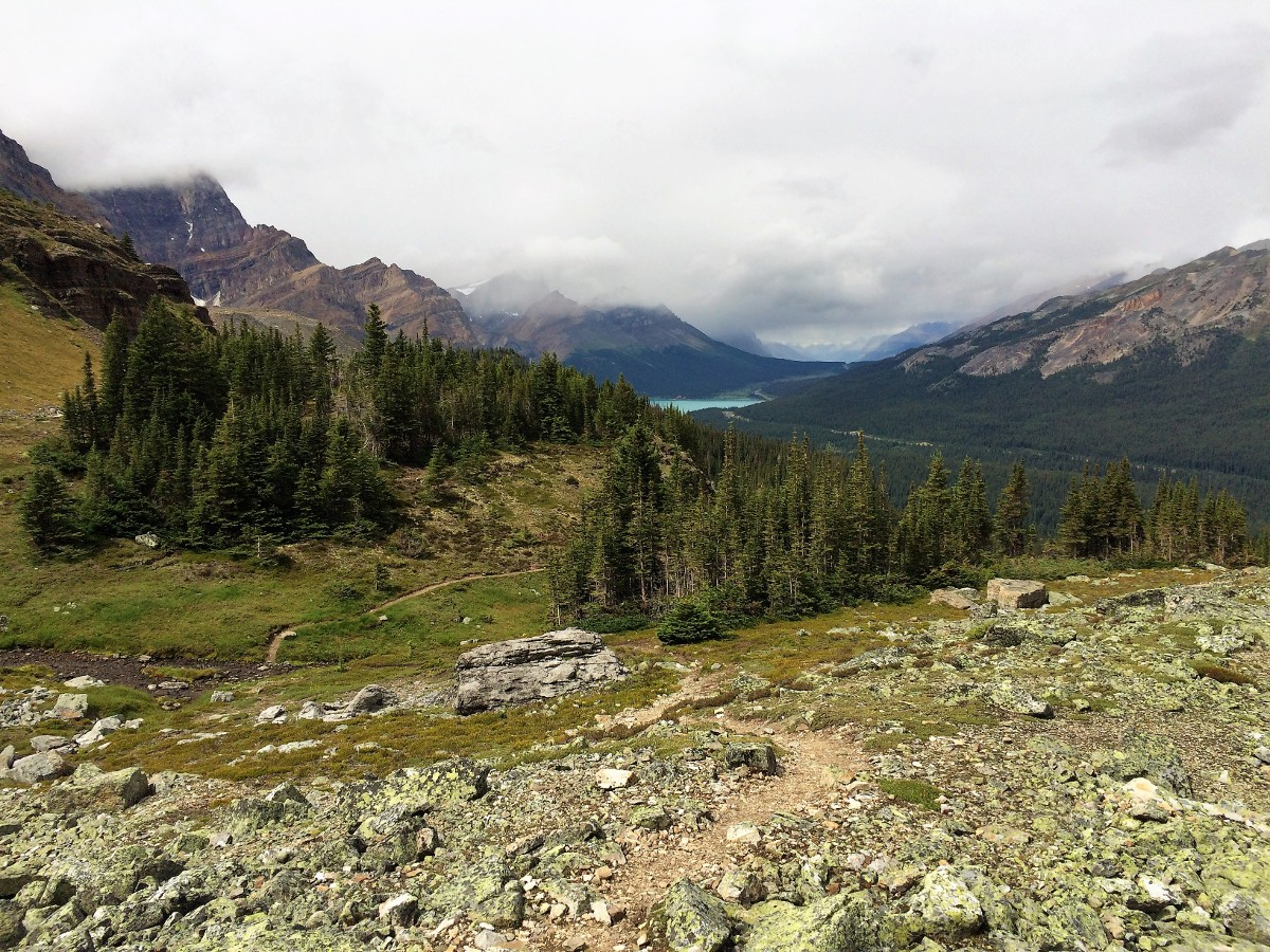 The route down the pass on the Crowfoot Pass and Balfour Viewpoint Hike from the Icefields Parkway near Banff National Park