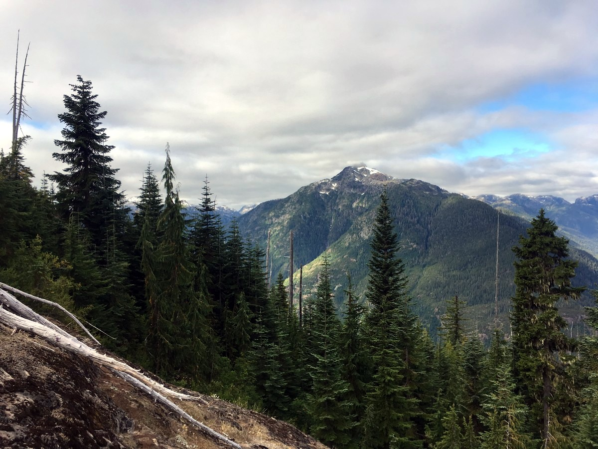 Mt Myra from the Flower Ridge Hike in Strathcona Provincial Park, Canada