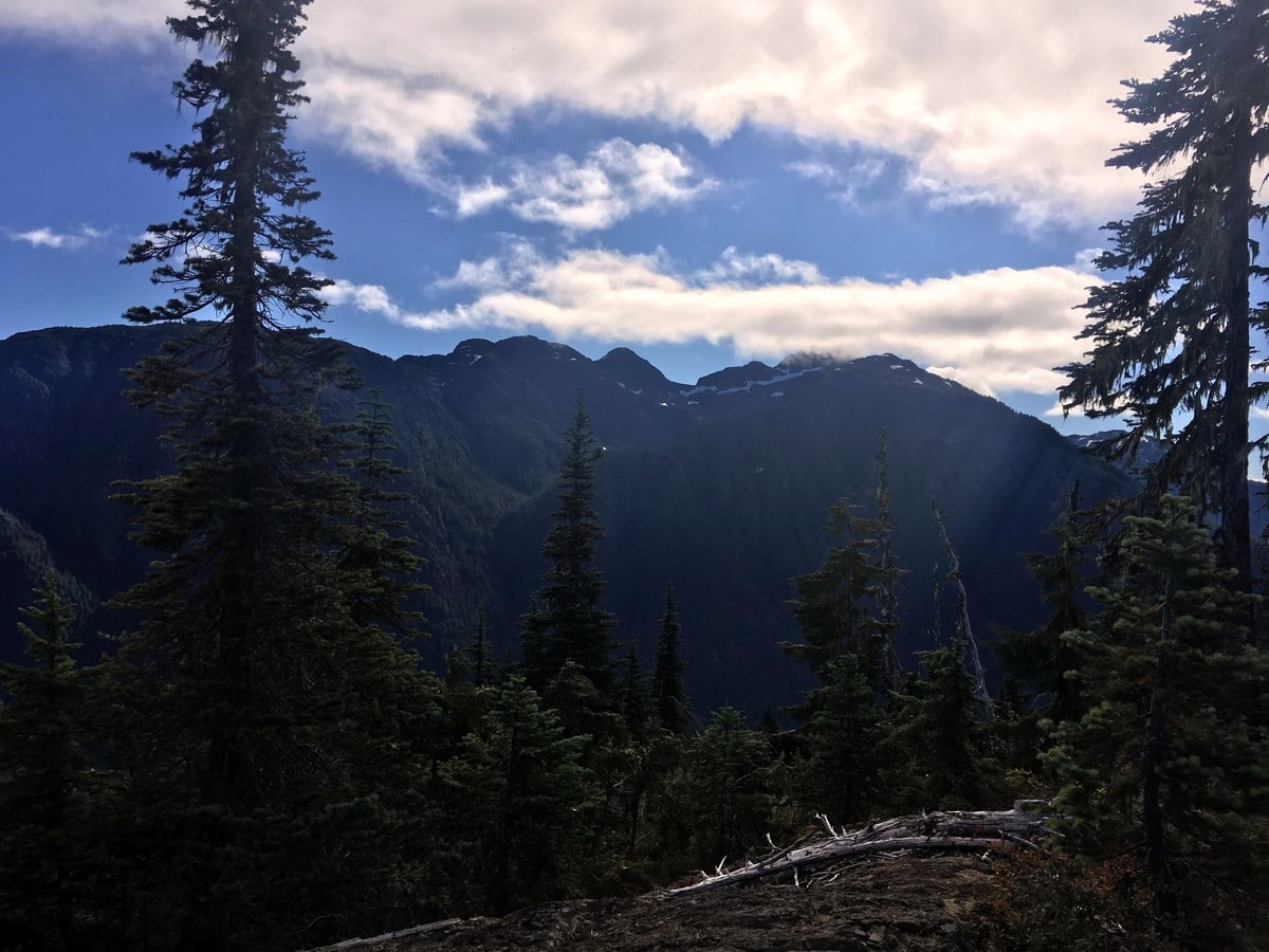 Halfway of the Flower Ridge Hike in Strathcona Provincial Park, Canada