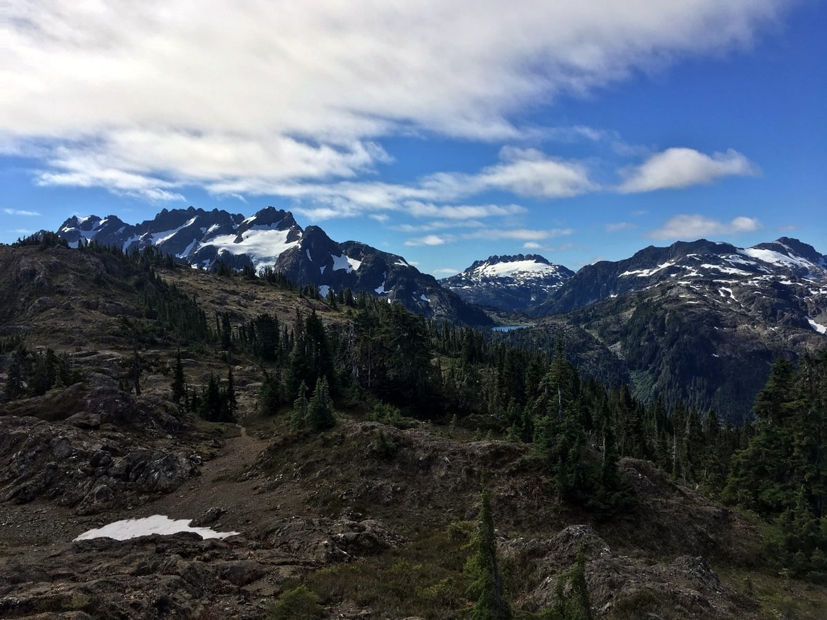 Surrounding peaks on the Flower Ridge Hike in Strathcona Provincial Park, Canada