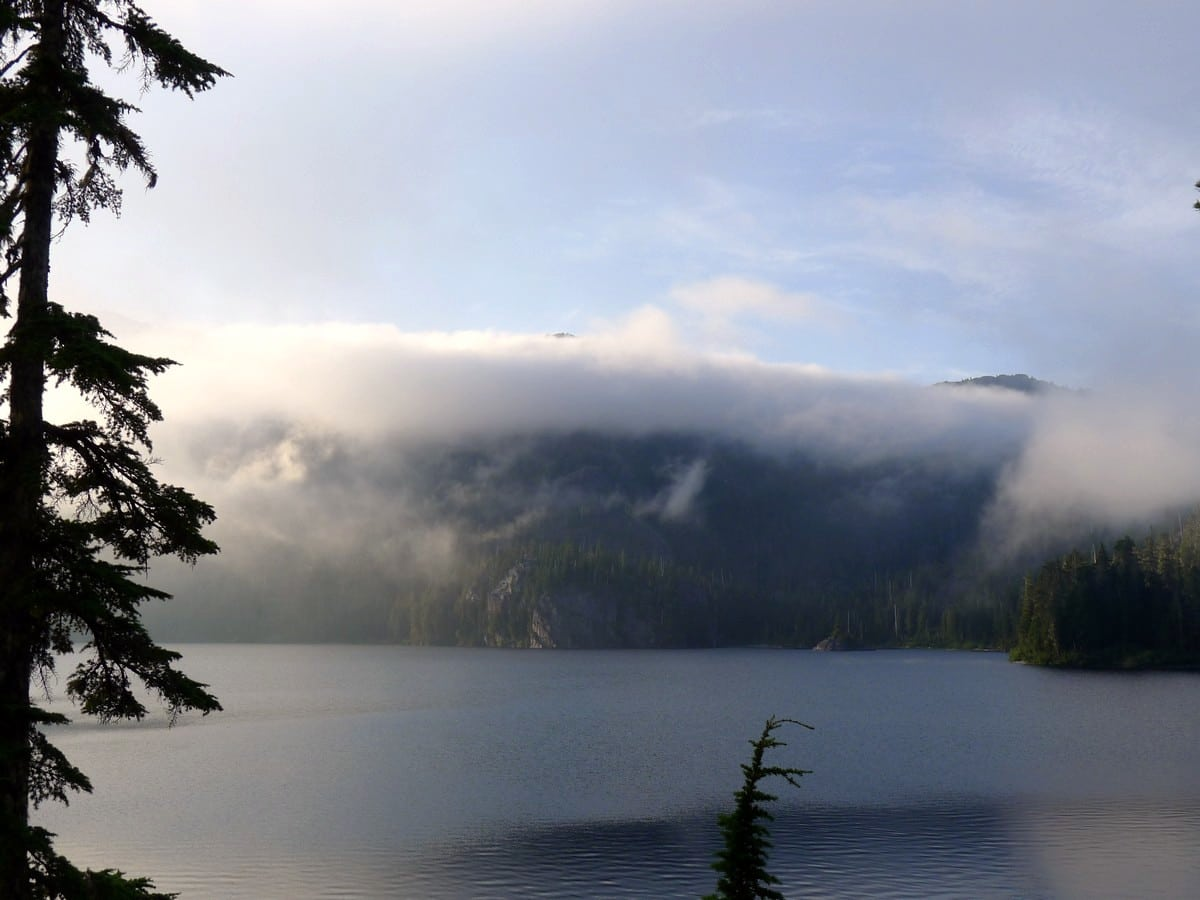Fog on the Bedwell Lake Hike in Strathcona Provincial Park, Canada
