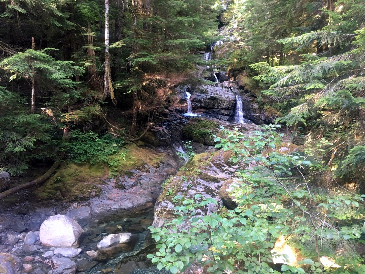 Trickling falls on the Elk River Trail Hike in Strathcona Provincial Park, Canada