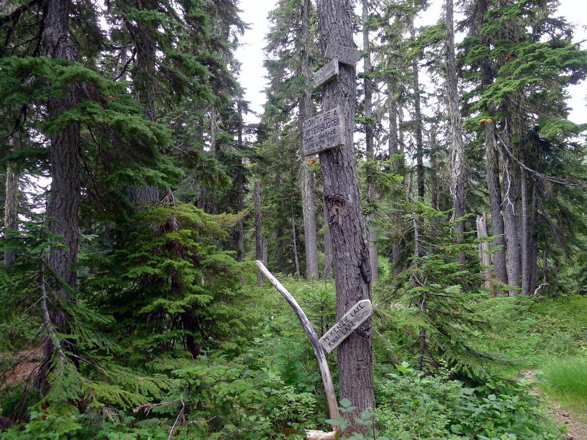 Trail signs on the Mt Becher Hike in Strathcona Provincial Park, Canada