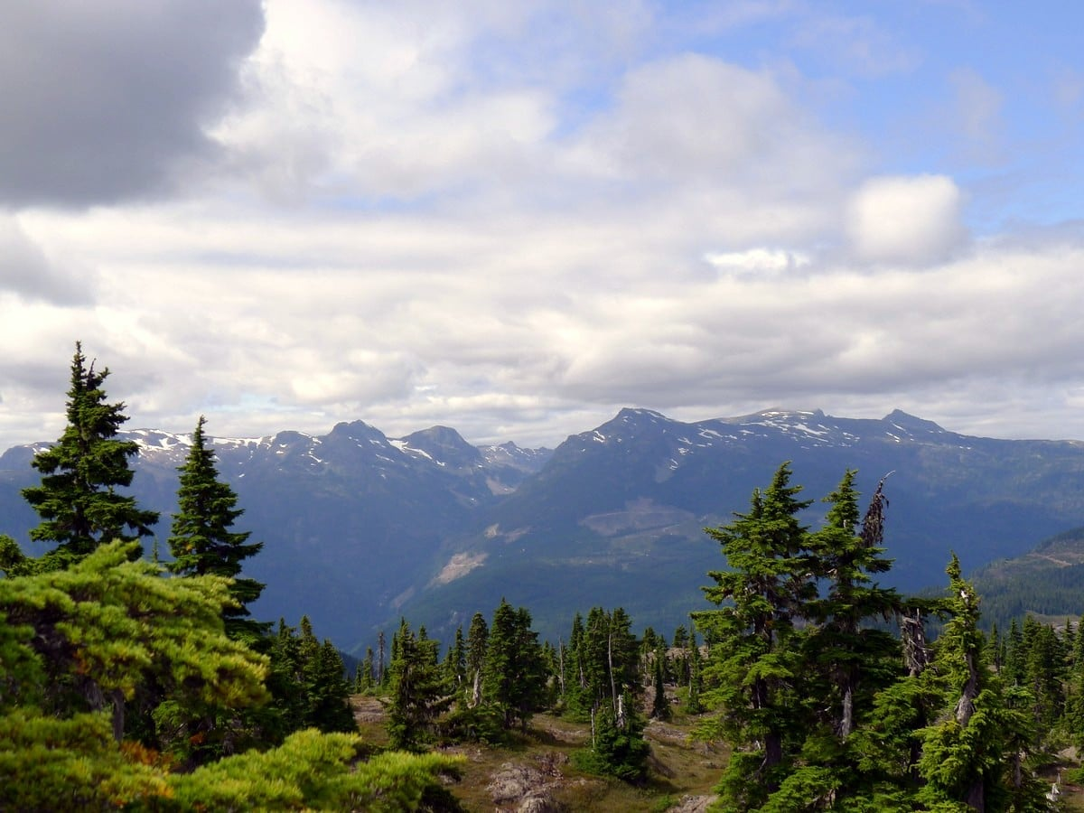 View from the summit of the Mt Becher Hike in Strathcona Provincial Park, Canada