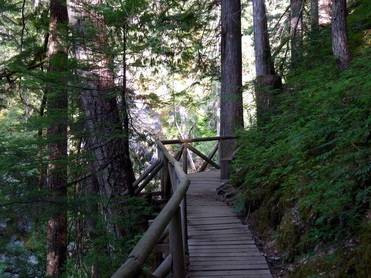 The viewing platform for the Falls on the Augerpoint Beach Hike in Strathcona Provincial Park, Canada