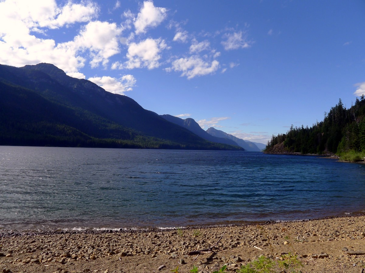 Looking north along Buttle lake