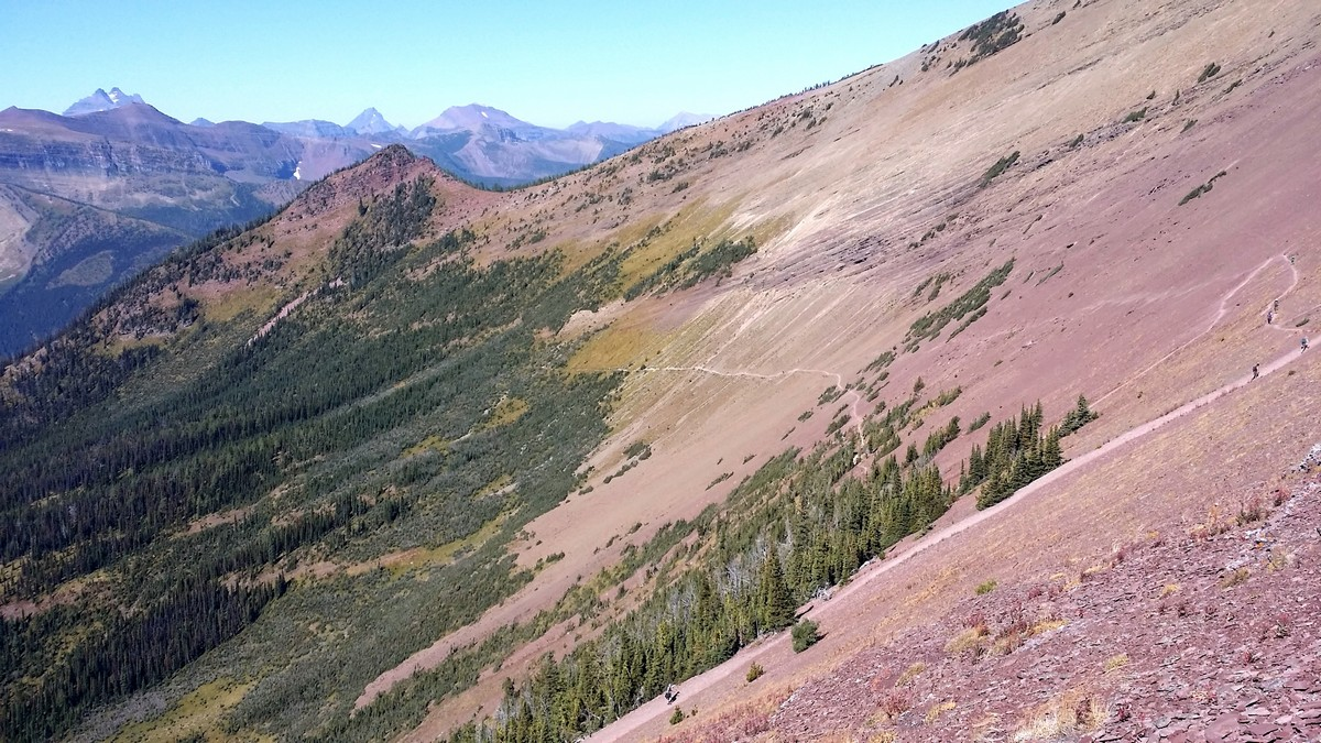Trail to summit on the Carthew - Alderson Hike in Waterton Lakes National Park, Canada