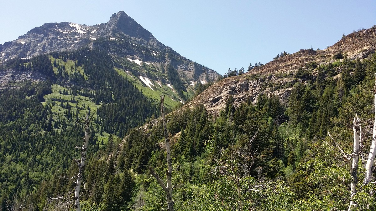 Mt. Richards on the Bertha Lake and Falls Hike in Waterton Lakes National Park, Canada