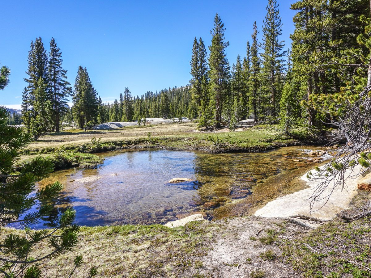 Cathedral Lakes Hike in Yosemite National Park leads along several beautiful lakes