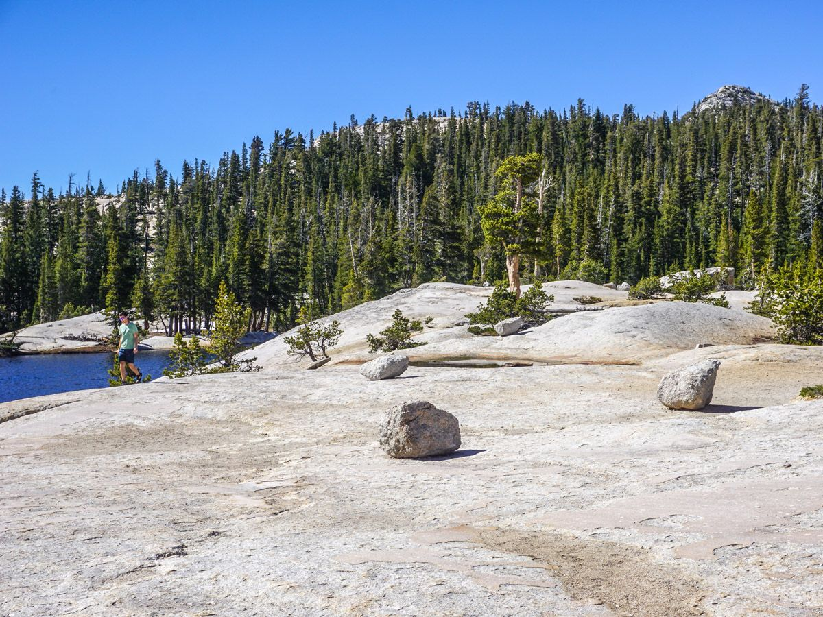 Rocks on the Cathedral Lakes Hike in Yosemite National Park, California