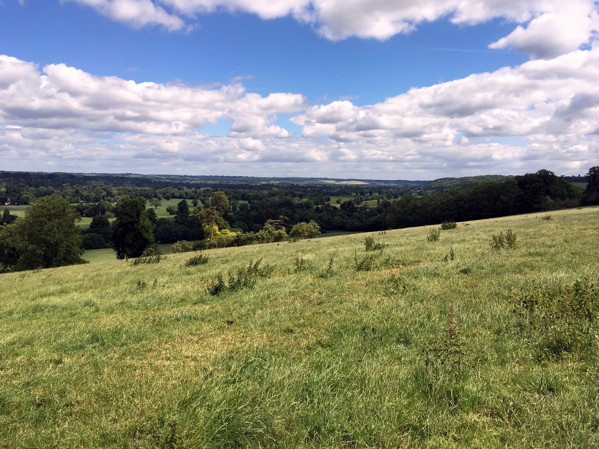 View from High Wood on the Hurley Loop Hike in Chiltern Hills, England