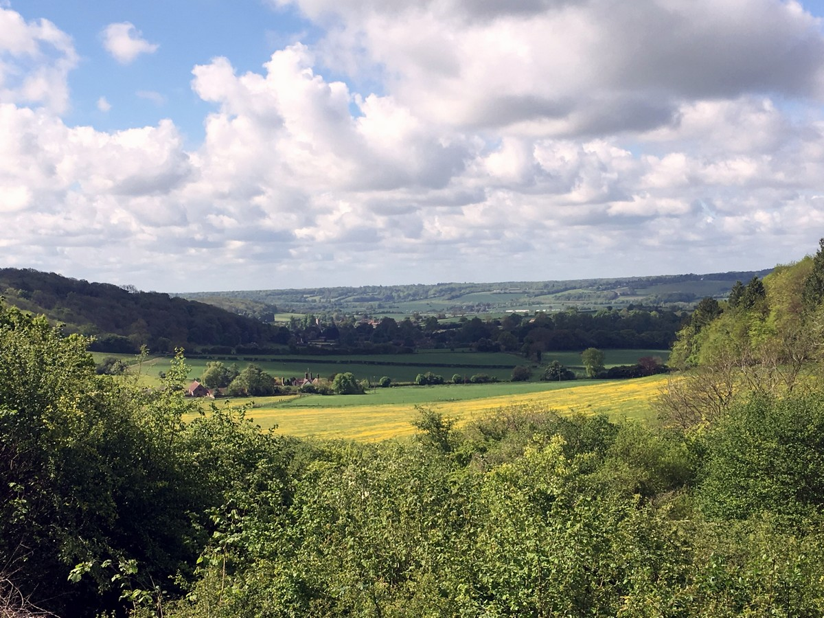 View of the valley on the Ashridge Boundary Trail Hike in Chiltern Hills, England