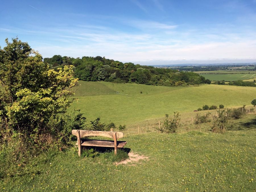 Bench In Aston Rowant Nature Reserve