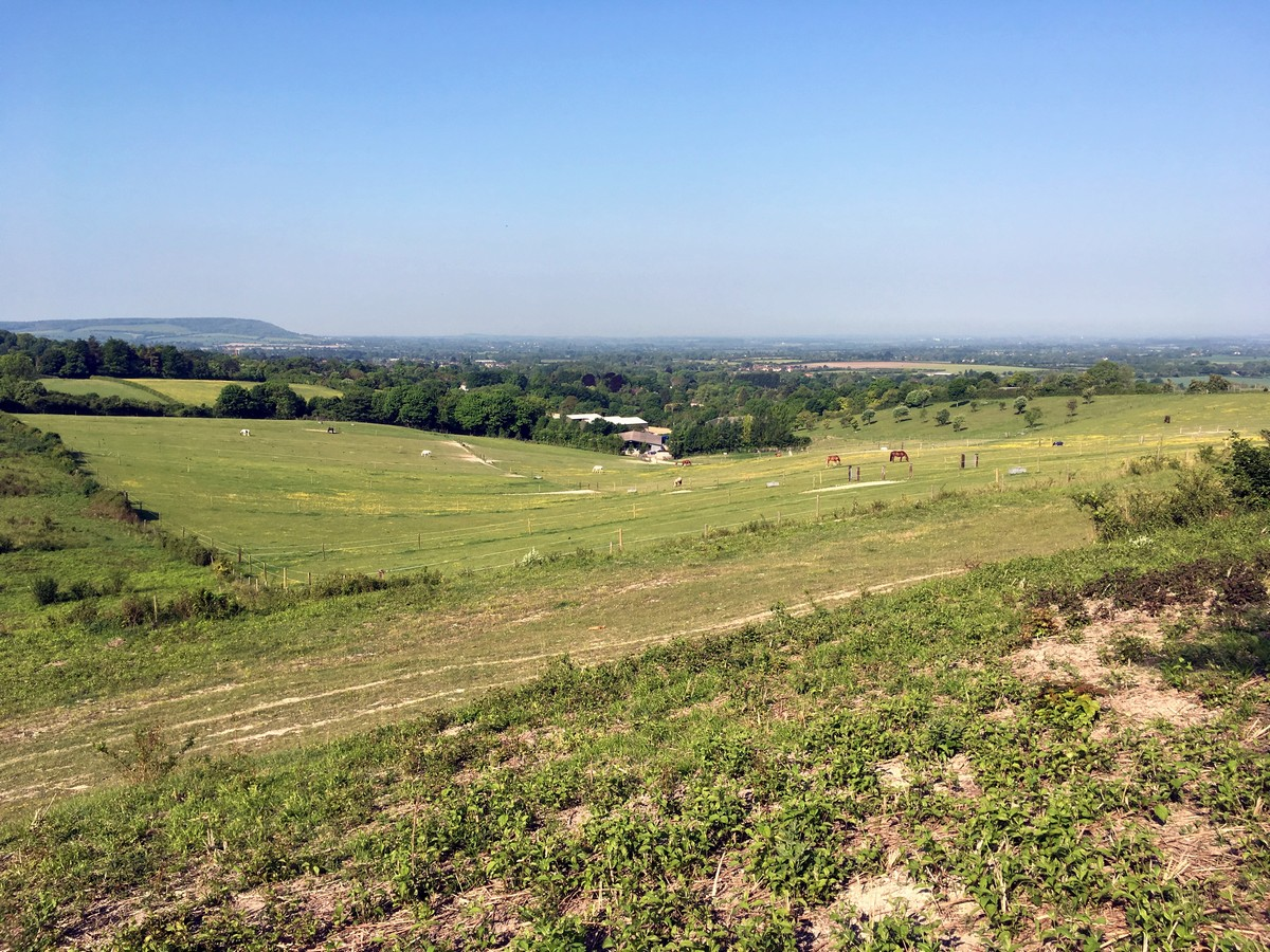 Grangelands Nature Reserve on the Brush Hill & White Leaf Nature Reserve Hike in Chiltern Hills, England