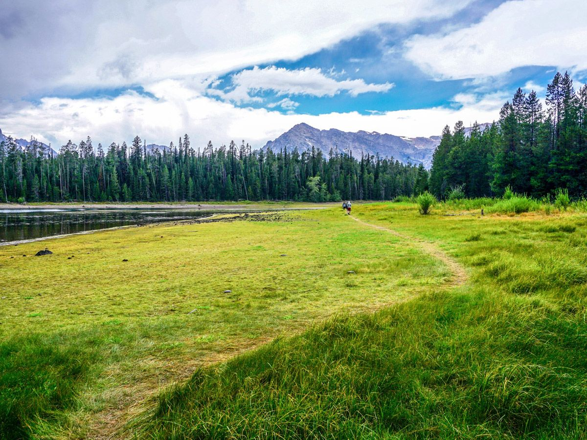 Trail of Colter Bay Hike in Grand Teton National Park