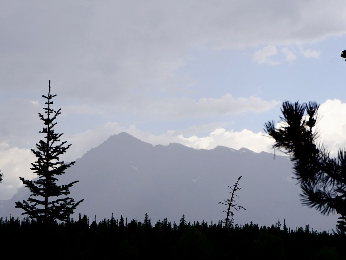 Colter Bay Hike in Grand Teton National Park is surrounded by beautiful trees