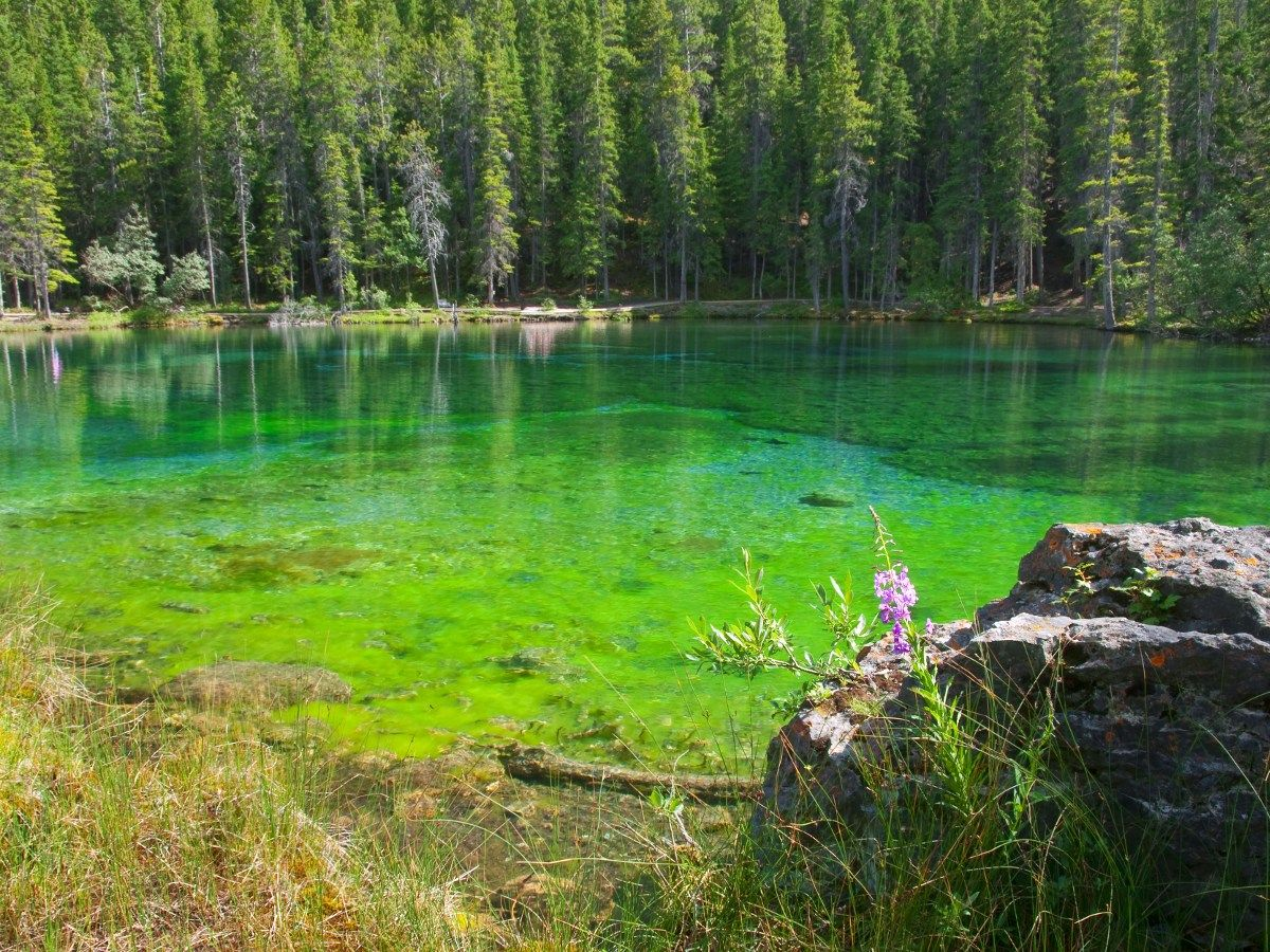 Crystal clear water on the Grassi Lakes Circuit Hike in Canmore, the Canadian Rockies