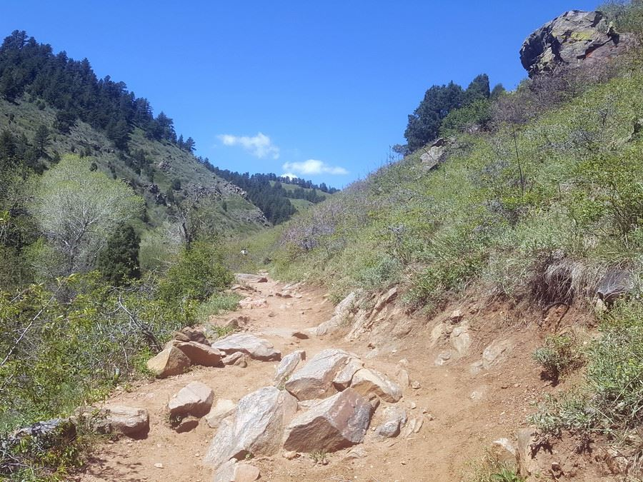 First mile of the Enchanted Forest Trail Hike near Denver, Colorado