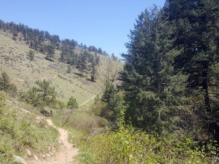 Apex trail from the Enchanted Forest Trail Hike near Denver, Colorado