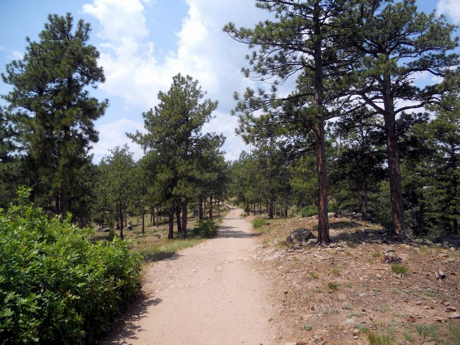 Top of Park Castle Trail from the Mount Falcon Park Hike near Denver, Colorado