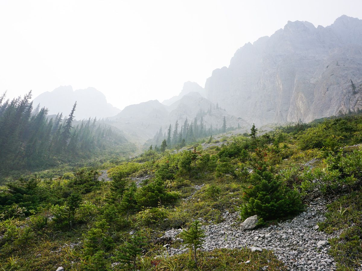 Fog on the trail of the Edith and Cory Pass Circuit Hike in Banff, Alberta