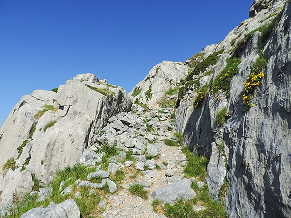 Scenery from the Mount Mounier hike in Mercantour National Park, France''