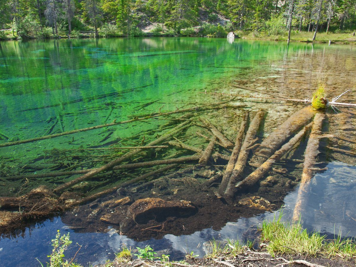 Visiting beautiful Grassi Lake is a great idea for the family's vacation in Canmore