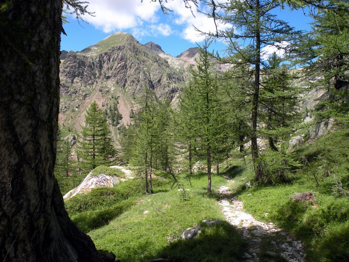 The path from Valmorta Valley on the Giro del Valasco Hike in Alpi Marittime National Park, Italy