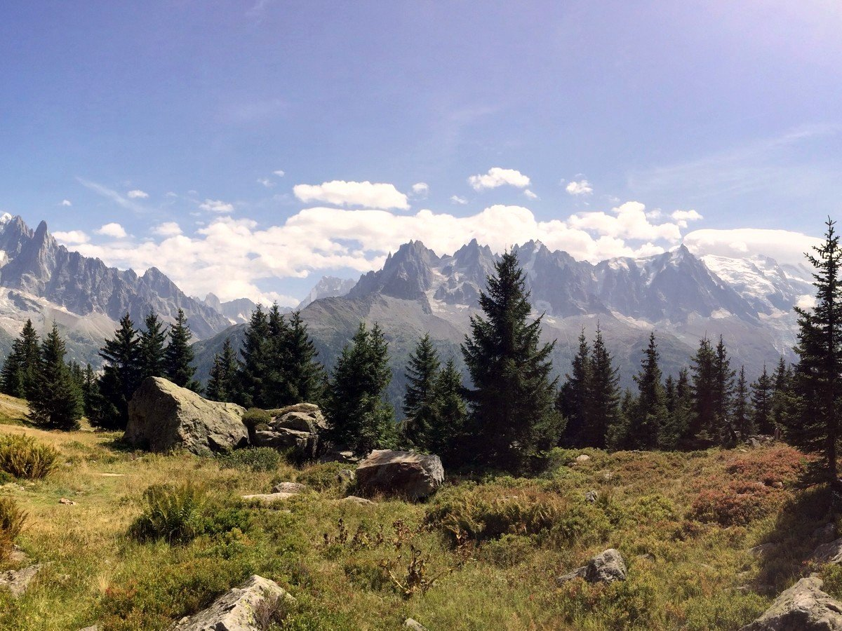 Charlanon Meadow on the Grand Balcon Sud Hike in Chamonix, France