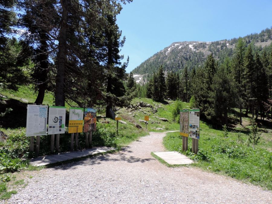 Path of the Lac d'Allos Hike in Mercantour National Park, France