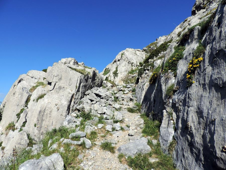 The path on the cliff on the Le Mont Mounier Hike in Mercantour National Park, France