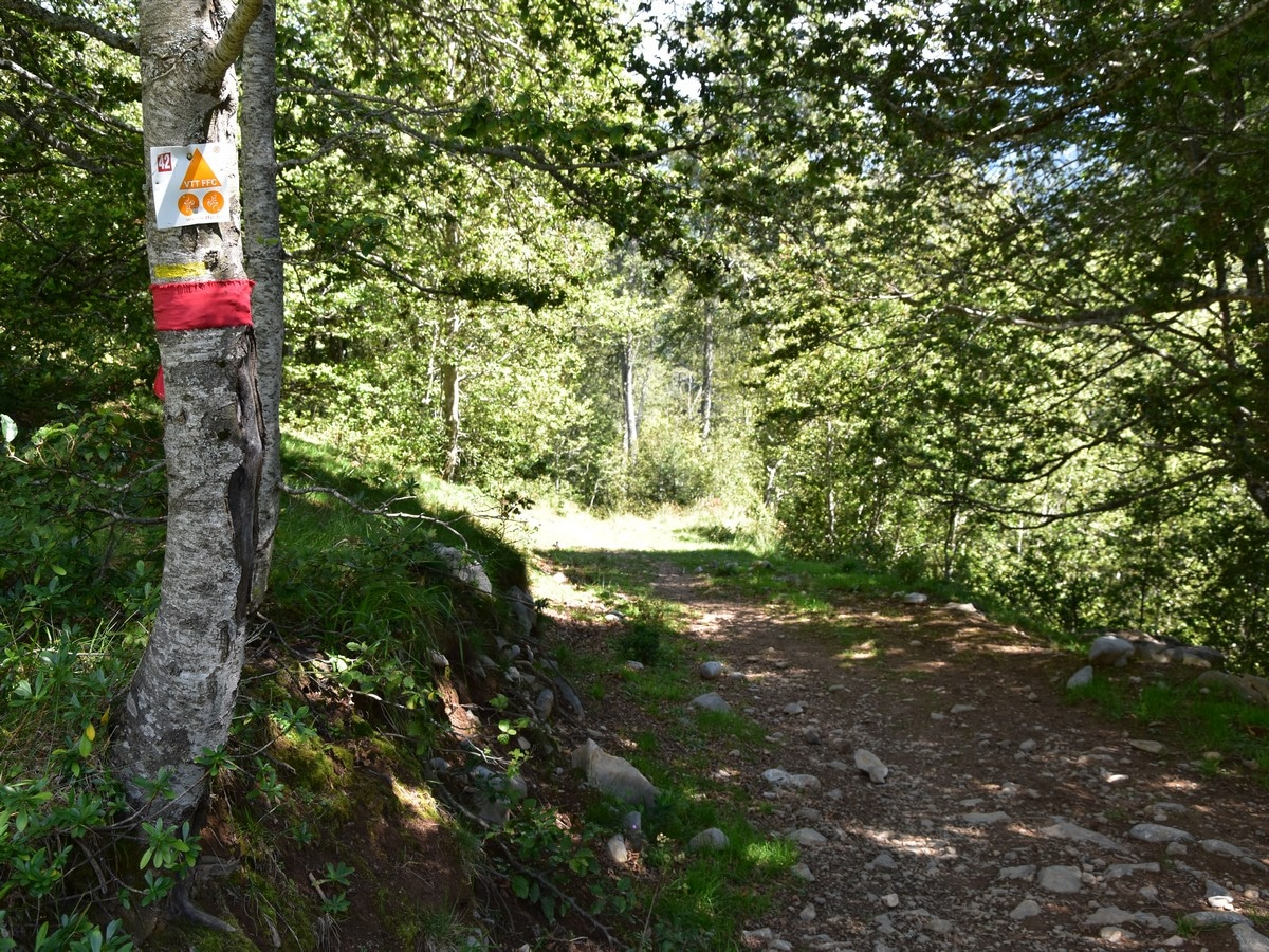 Orange signs on the Cagire Loop Hike in French Pyrenees