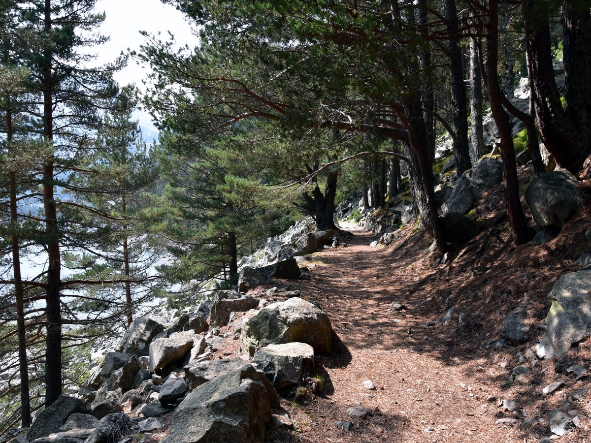 Easy Hike Along the Rocky Trail