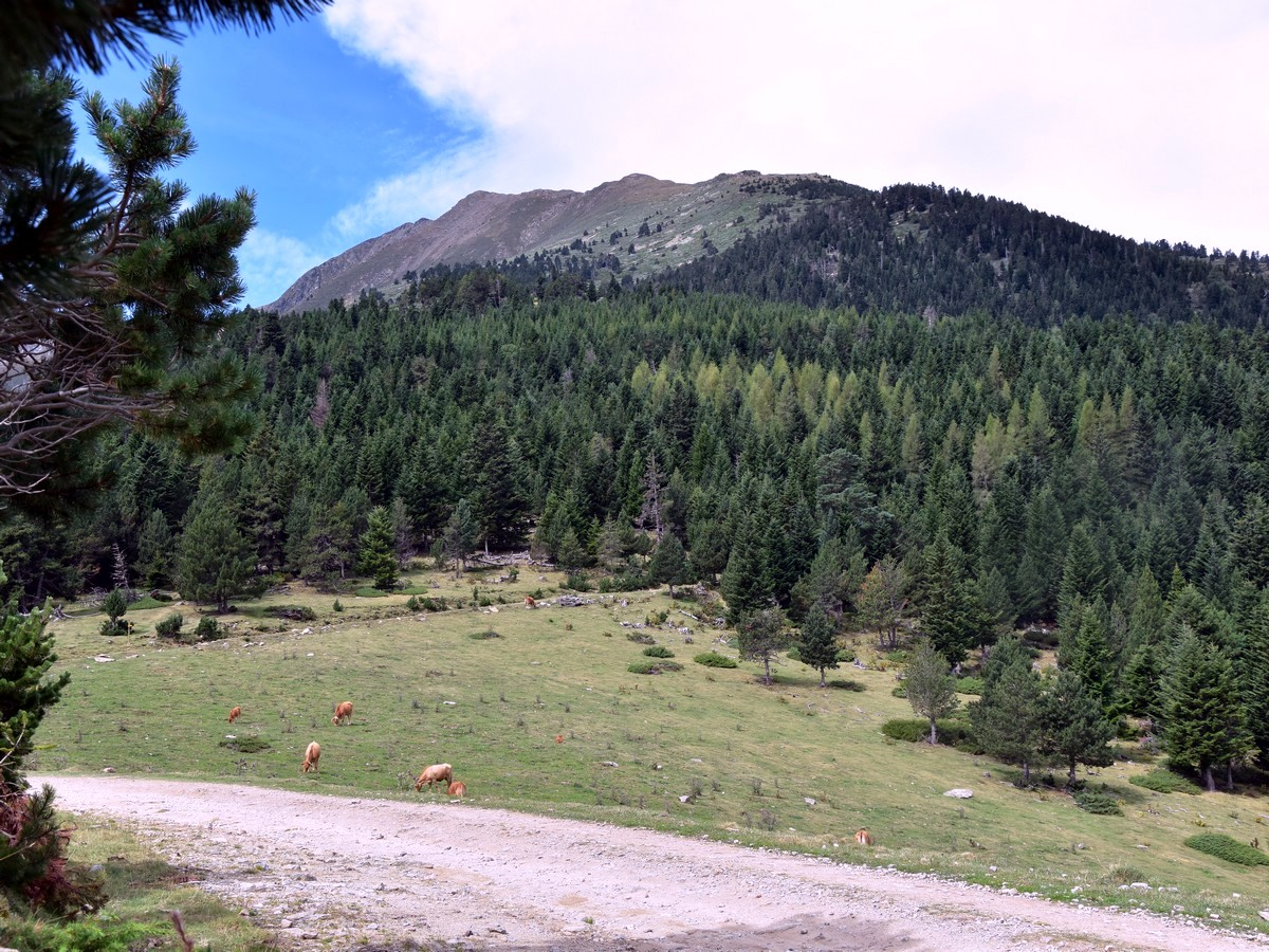 Reaching the main track on the Pic du Canigou Hike in French Pyrenees
