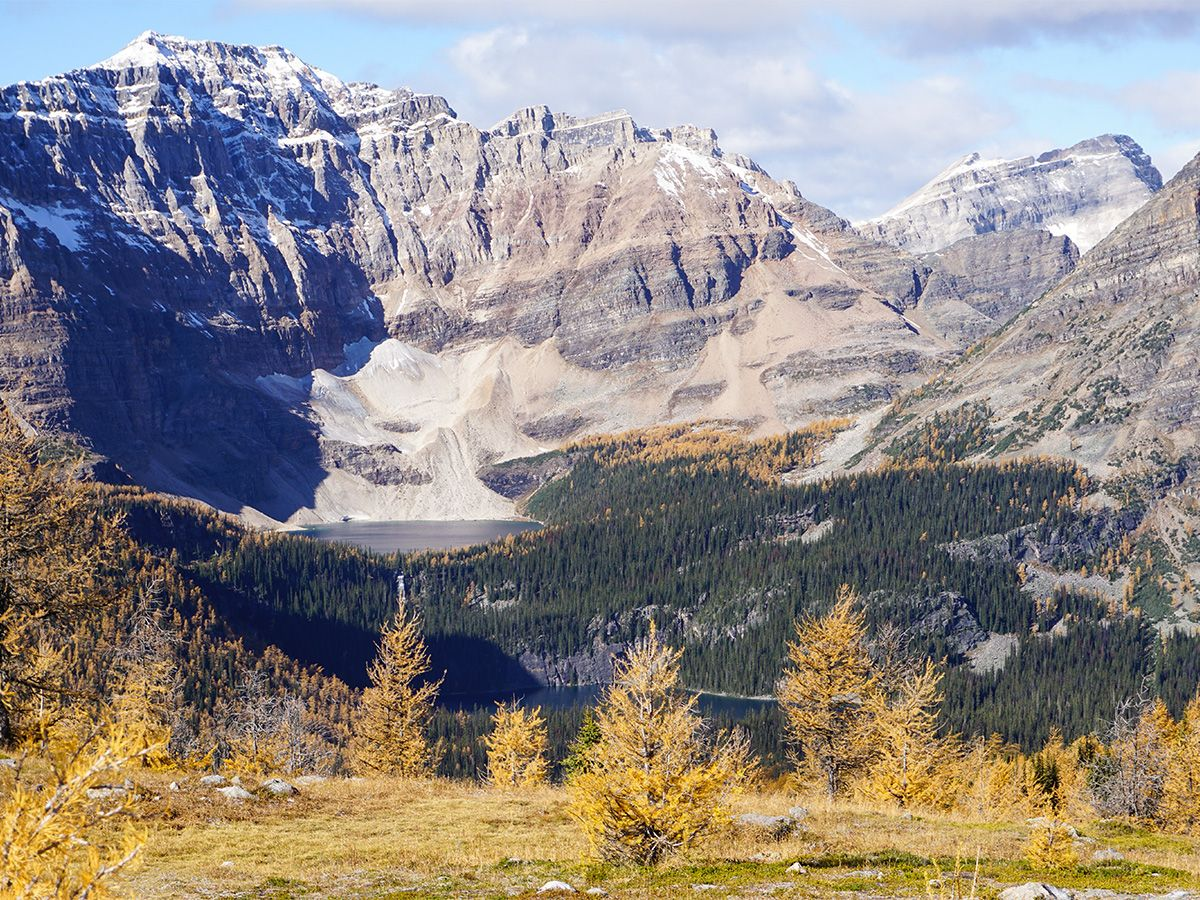 Mountain at Healy Pass Hike in Banff National Park