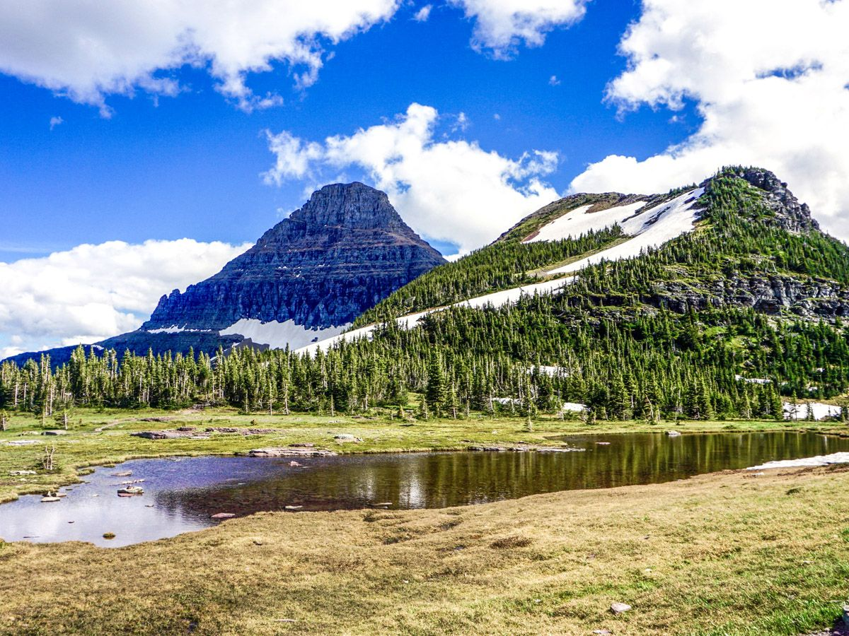 Hidden Lake Overlook Hike in Glacier National Park has amazing views
