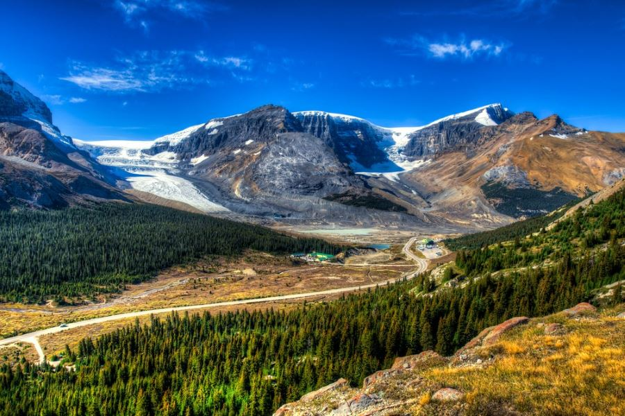 Wilcox Pass is a bucket-list hike for adventure lovers around Icefields Parkway