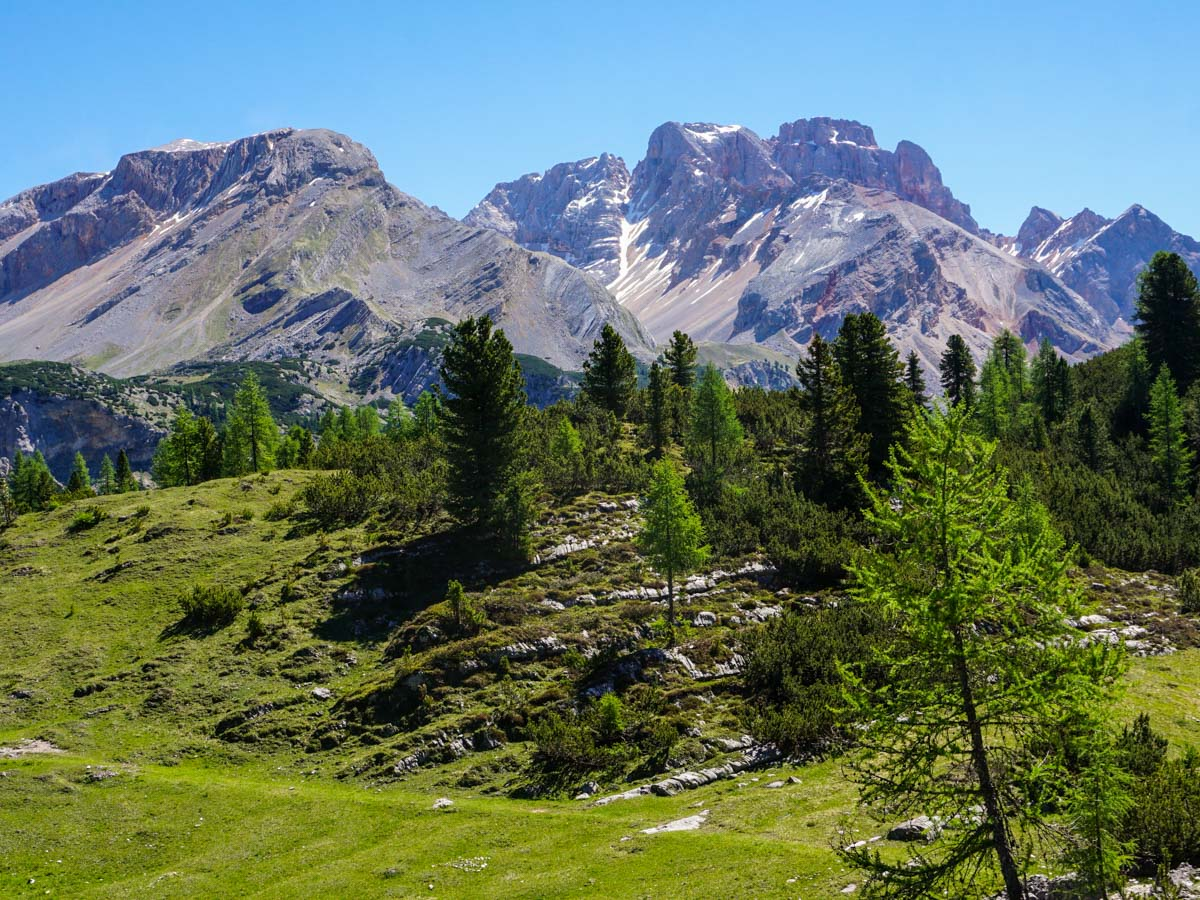 Beautiful views from the Alpe di Sennes Hike in Dolomites, Italy