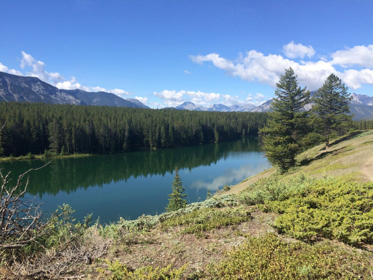 Family-friendly trail of the Johnson Lake Hike near Banff, the Canadian Rockies
