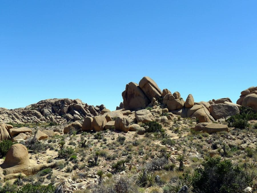 Split Rock Trail hike is a great idea to spend time in Joshua Tree National Park