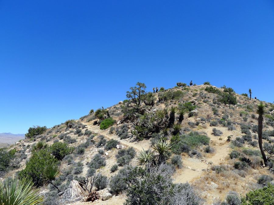 Take the High View Trail in Joshua Tree National Park to make you trip special