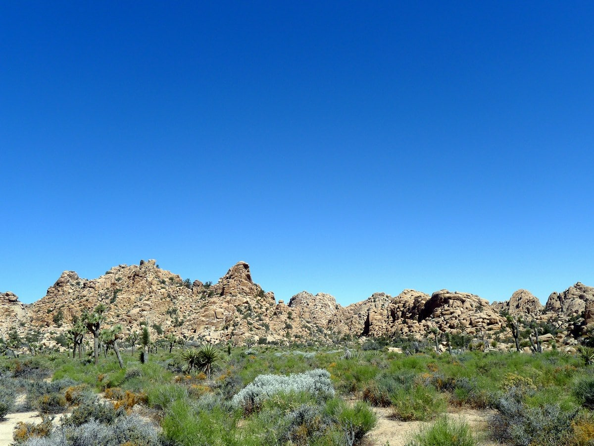 Rock formation on the Hidden Valley Loop Hike in Joshua Tree National Park, California