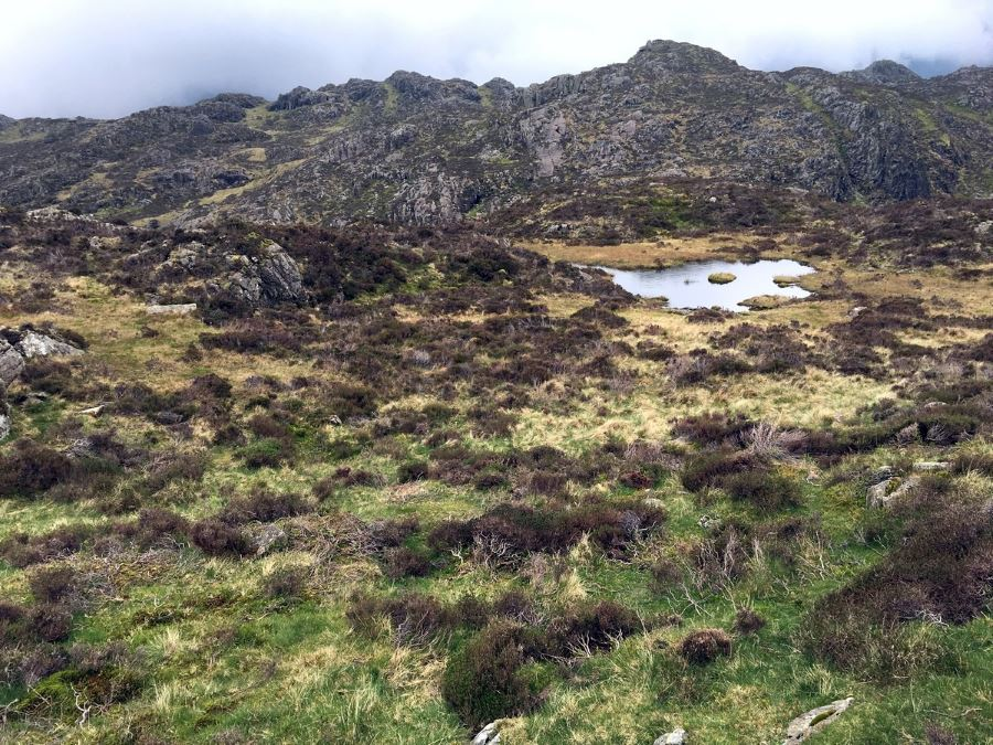 Looking back on Innonimate Tarn on Haystacks Walk